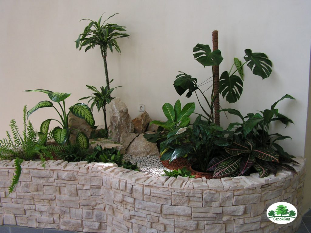 Озеленение интерьеров в Йошкар-Оле, Марий Эл